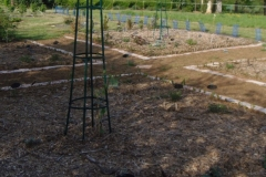 préparation d'un nouveau jardin