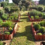 jardin bordé de tuiles